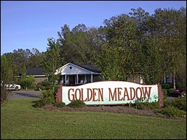 Senior_Ser_Golden_Medow
